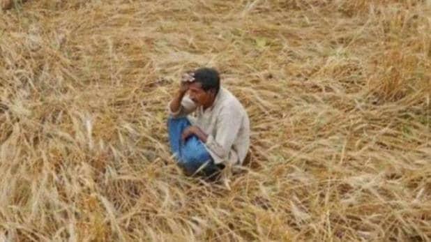 BJP के 'महाराष्ट्र चारा घोटाला' का क्या है पूरा सच ?